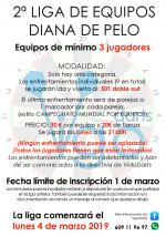 2º Liga Equipos Diana Pelo | VigoDarts